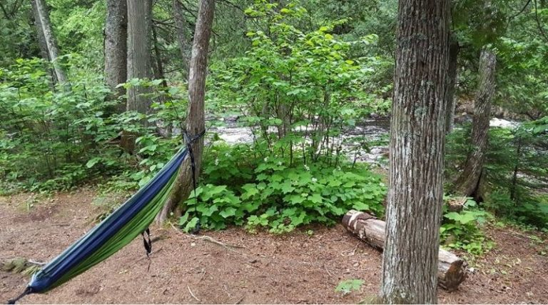 5 Reasons Why You Need To Go Camping
