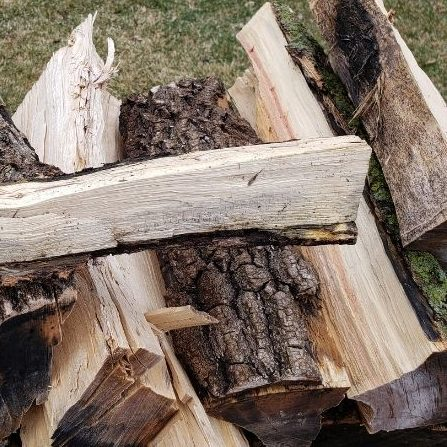 Fuel logs for building a campfire. One split log stacked on top of a log pile.