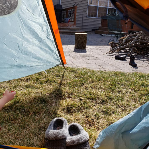 Tent in backyard for backyard camping